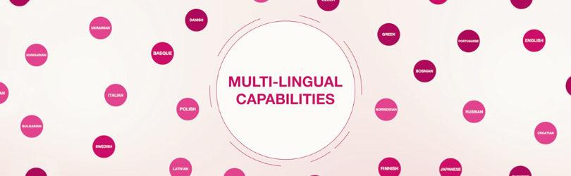 How Teneo's Language Resources Help Machines Understand Humans